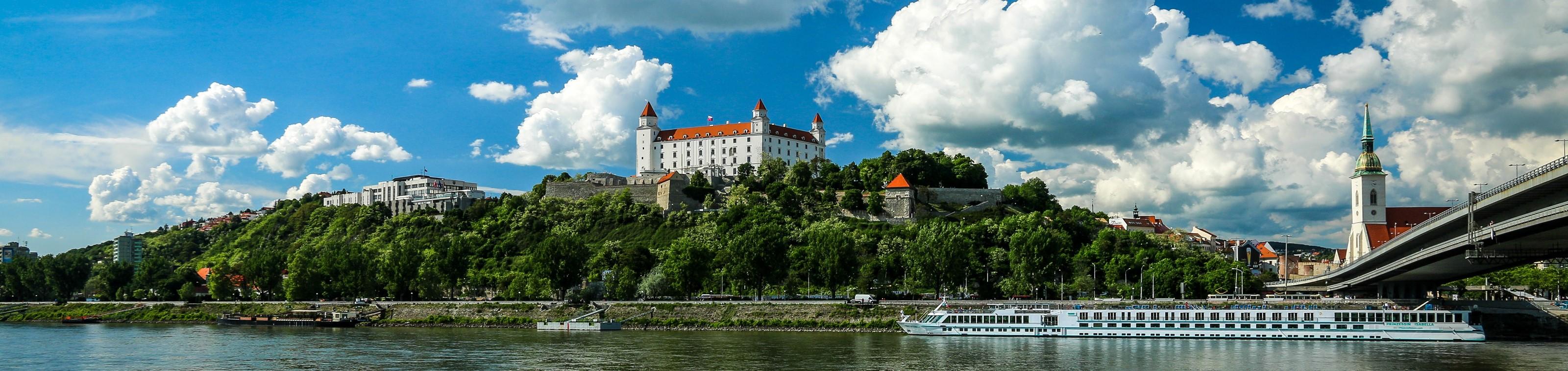 Nieuwjaarscruise op de Donau