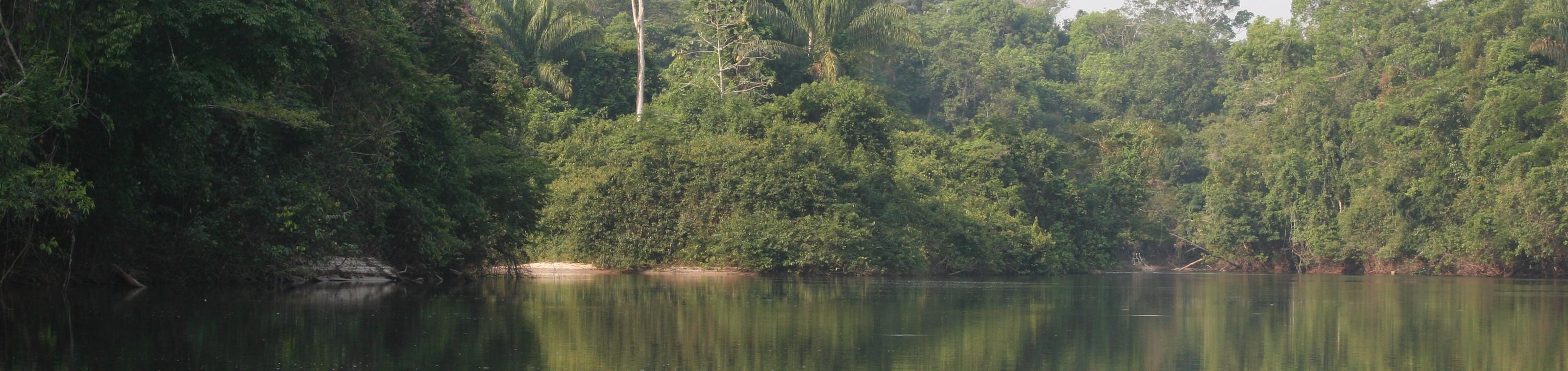 Exploratiereis in de Pantanal