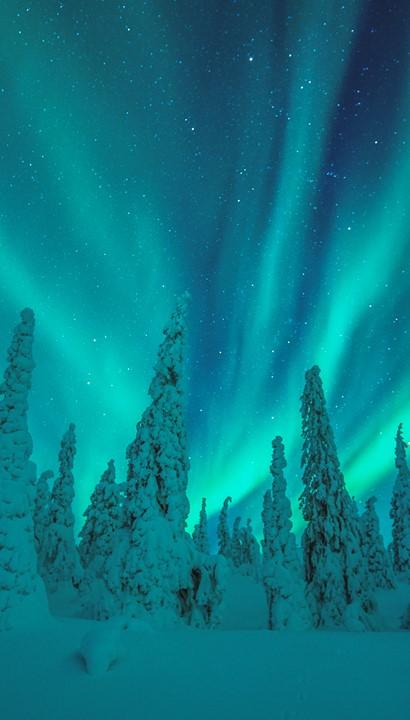 Winterse pracht en avontuur in Lapland