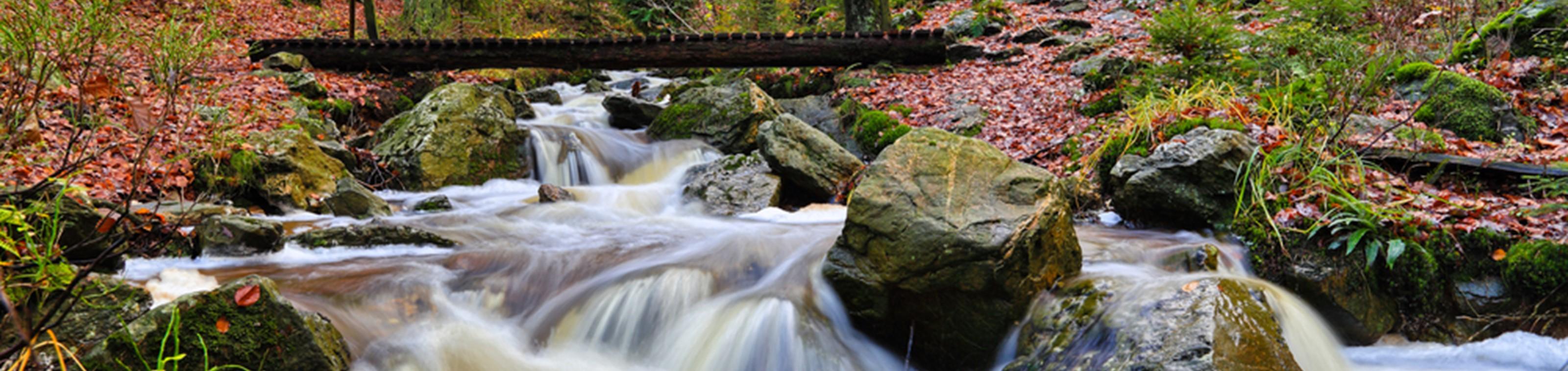 Natuur in de Ardennen: Hotel Le Val de Poix