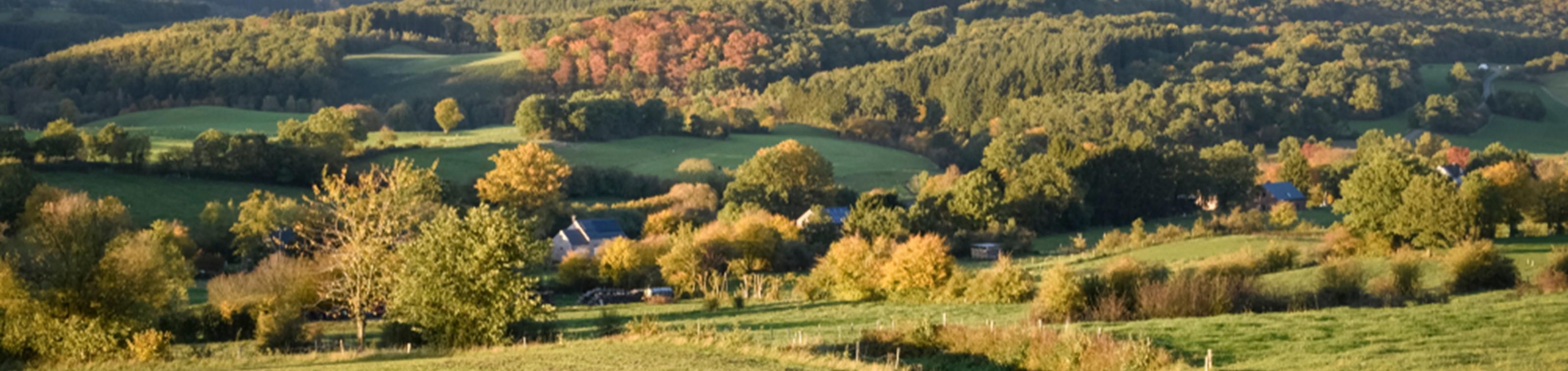 Natuur in de Ardennen: Hotel Les Jardins de la Molignée