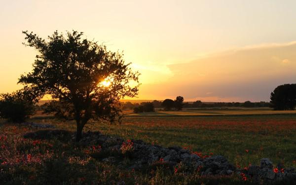Fascinerend Matera en de prachtige kleuren van Puglia