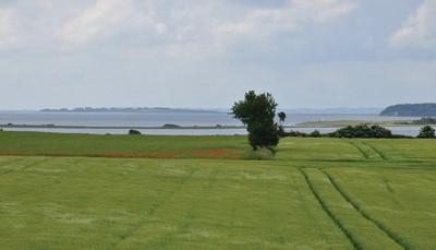 """<div style=""""text-align: justify;"""">Funen is het tweede grootste eiland van Denemarken. Het ligt tussen het eiland Seeland en het vasteland van Denemarken. Funen wordt ook wel eens de tuin van Denemarken genoemd omwille van de glooiende heuvels, de boomgaarden en de boerderijen. De eilandengroep in het zuiden van Funen is een geweldige plek om te verkennen. Hier vind je prachtige eilanden, baaien en kleine inhammen.</div>"""