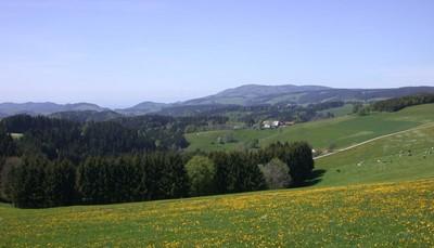 """<div style=""""text-align: justify;"""">Door zijn gunstige ligging op een zonnige, naar het zuiden gekeerde hoogvlakte wordt Höchenschwand wel eens het &#39;dorp aan de hemel&#39; genoemd. Een uitstap naar Freiburg loont de moeite. Deze stad heeft heel wat te bieden op vlak van kunst en cultuur.</div> &nbsp;<br /> &nbsp;"""