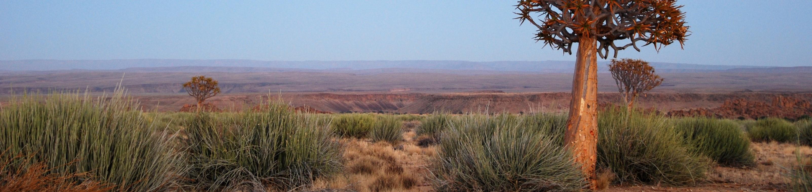 Rondreis klassiekers van Namibië