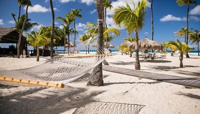 """<p style=""""text-align: justify;"""">Aruba is een zonovergoten parel in de Caraïben. Diepzeeduikers en snorkelaars kunnen zich uitleven in de fascinerende onderwaterwereld. De constante passaatwinden zorgen voor plezier bij surfers, parasailers en zeilers. De Arubaanse keuken is rijk aan specialiteiten van regionale en Zuidamerikaanse afkomst en is een waar genoegen voor de fijnproevers. Cactussen en Divi-divi bomen beheersen het landschap. Aruba staat voor een combinatie van een bruisend nachtleven, exotische strandverrassingen, sport en culinaire hoogstandjes.</p>  <p></p>"""