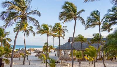 """<div style=""""text-align: justify;"""">Je verblijft in het Manchebo Beach Resort op het breedste stuk strand van Aruba en met uitzicht op de turkooisblauwe oceaan. In dit kleinschalig en rustgevend 4-sterren hotel staan rust en verwennerij centraal. Beleef jouw persoonlijk Caribisch paradijs in dit intieme boetiekhotel, prachtig gelegen op het parelwitte strand van Eagle Beach. Op het ritme van de oceaan met een lekkere cocktail in de hand beleef je hier de vakantie van jouw dromen. Vlak aan het hotel bevinden zich een aantal kleine winkeltjes en een gezellige bazaar.Vanuit Aruba vlieg jemet KLM, via Amsterdam, terug naar Brussel.</div> <br />"""