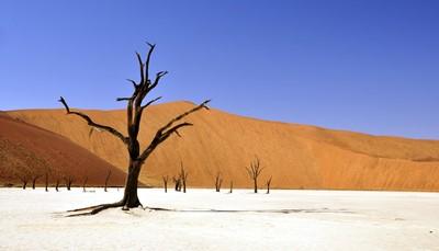Namibië in een oogopslag