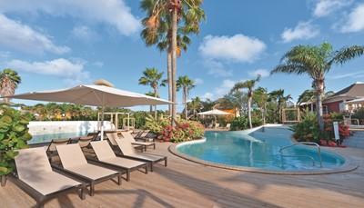 """<div style=""""text-align: justify;"""">Het Chogogo Dive &amp; Beach Resort is ideaal gelegen voor (water)sport-, natuur- en cultuurliefhebbers. In het resort zelf kan je een duikje nemen in een van de 2 zoetwaterzwembaden, of heerlijk ontspannen in een van de 2 hottubs. Kinderen kunnen lekker spelen in het kinderbad. Iets verder ligt het duikcentrum, waar je ook verschillende watersporten kan uitproberen. Wandelaars kunnen de zoutpannen en de vele flamingo&rsquo;s gaan bezichtigen. Op een steenworp van het hotel ligt ook een golfbaan, en op het strand kan je je aan een potje beachtennis wagen.</div>"""