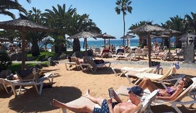 """<strong>Riu Arecas: splinternieuw en verzorgd</strong> <div style=""""text-align: justify;"""">Het RIU Arecas werd een tijdje geleden volledig gerenoveerd, om tegemoet te komen aan de wensen van klanten. Er zijn twee zwembadzones met ligstoelen. Omdat het hier vrij druk kan worden, is het ook aangenaam vertoeven is het aan de beachclub. Deze is gelegen aan de overkant van de straat vlak naast de Riu Palace. Om er te geraken gebruik je echter heel wat trappen, wees dus zeker voorbereid en hou hiermee rekening.</div>"""
