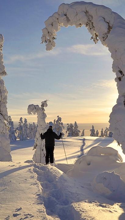 8 dagen Lapland inclusief 4 excursies