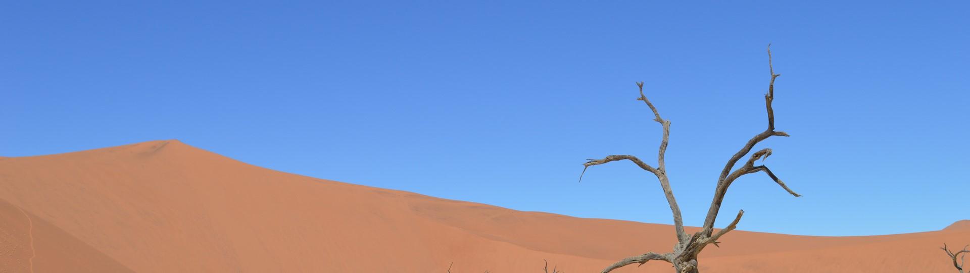 Onze reis naar Namibië was fantastisch !