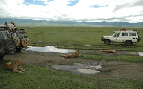 Jambo Karibu, rondreis Kenia