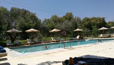 Het hotel: Grecotel Villa Oliva