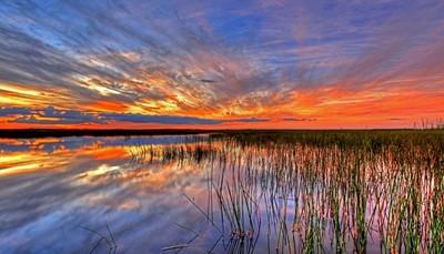 <p>U ontdekt vandaag de Everglades. Op verschillende plaatsen heeft u de mogelijkheid om met een &ldquo;vliegboot&rdquo; over de moerassen te &ldquo;vliegen&rdquo;.&nbsp;</p><p>U bereikt &ldquo;The Keys&rdquo;, een keten van subtropische eilandjes verbonden door de US 1 of The Overseas Highway. U logeert op het laatste eiland nl. Key West.</p>
