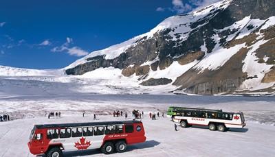 <p>U rijdt langsheen de Icefields Parkway tot Banff, het spectaculairste gedeelte van Alberta. U kunt stoppen aan de verschillende &ldquo;viewpoints&rdquo; zoals de Athabasca Falls of Sunwapta Falls. Het hoogtepunt is de Columbia Icefield, een 325km&sup2; groot ijsveld waarbij u met een &ldquo;Ice Truck&rdquo; over de gigantische Glacier rondtoert.</p><p>U kunt Sulphur Mountain bezoeken die u bereikt met de gondolalift. Maak een kleine rondrit door Banff met oa. Buffalo Nations Luxton Museum (Indiaanse cultuur) of blaas uit op het terras van het Banff Springs hotel met een mooi uitzicht.</p><p>U rijdt tot Lake Louise en Lake Moraine, waar u een boottocht of wandeling kunt maken. Het beroemde Fairmont Chateau Lake Louise is een bezoek waard.</p>