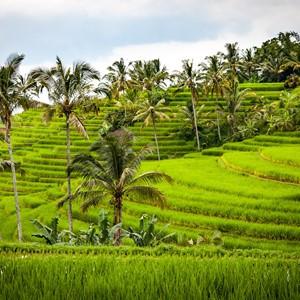 Infoavond Sri Lanka en Indonesië