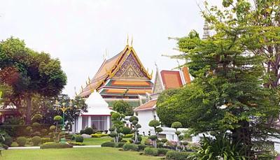 <p>Wil je er even tussenuit en mag het eens wat anders zijn dan de Middellandse Zee? Dan is deze unieke promotie een buitenkans! U vliegt vanaf Brussel rechtstreeks naar Thailand en maakt er kennis met de bruisende hoofdstad Bangkok. Nadien geniet u van zon-zee-strand in Phuket.&nbsp;</p><p><br></p><p><strong>Je vindt alle informatie rechts op deze website. Zie rubriek &#39;(niet) inbegrepen&#39; en &#39;meer informatie&#39;. Verlengen mogelijk!</strong></p>