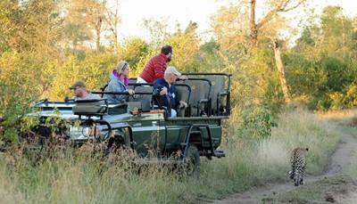 """<ul style=""""text-align:left;padding-left:15px;""""> <li>Luxueuze lodge met 12 kamers</li> <li>Volledig afgehuurd door Reizen De Lathauwer</li> <li>Sebatana wildreservaat van 40 000 ha ( = 400 km2)</li> <li>Malariavrije regio</li> <li>Gelegen nabij Vaalwater in de Waterbergregio, 2.5u rijden ten noorden van Johannesburg</li> <li>Geen jetlag</li> </ul>"""