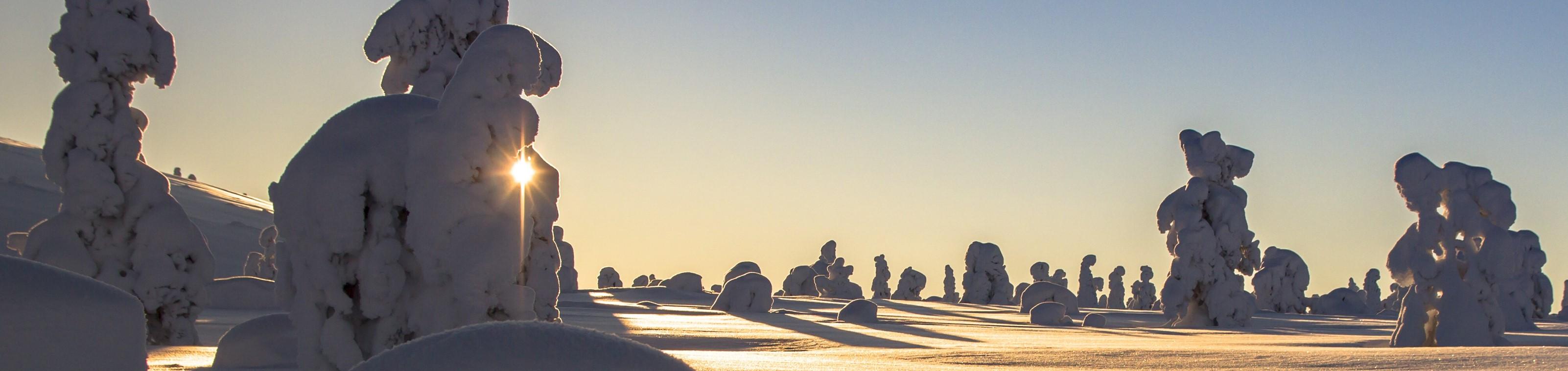 Winters avontuur in Fins Lapland