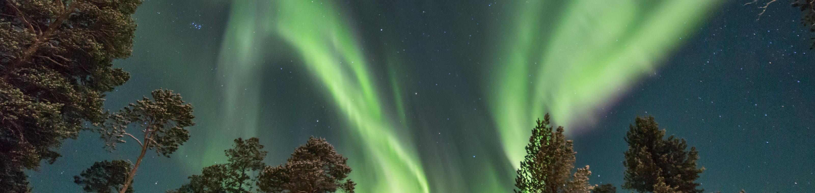 Een magische kerst in Finland