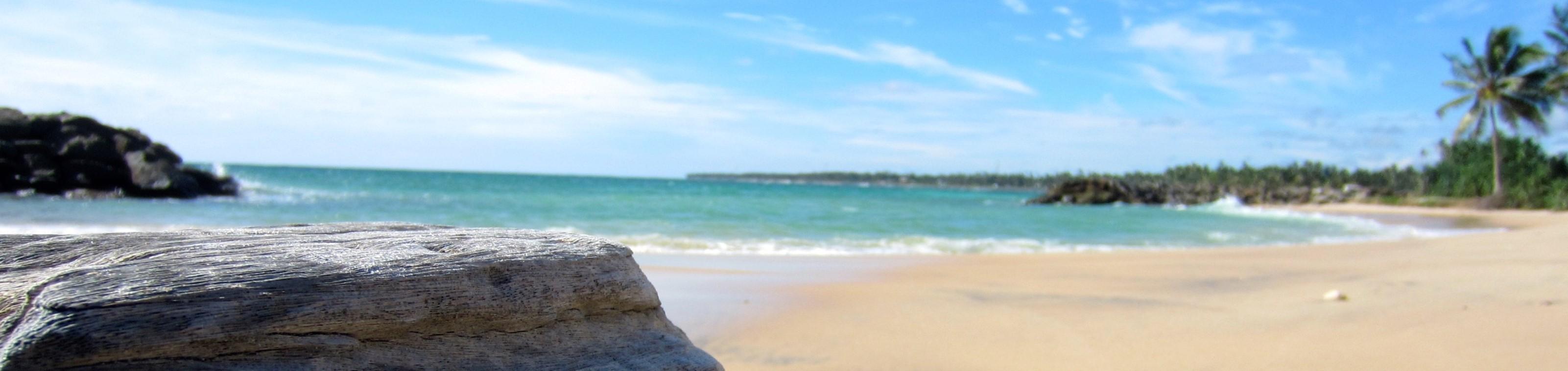 Sri Lanka – rondreis met gids