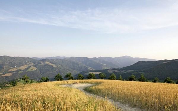 Rondreis: proeven van het echte  Italië