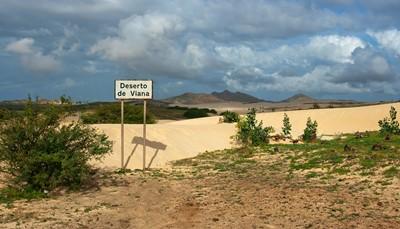 Boa Vista en de andere Kaapverdische eilanden zijn gekenmerkt door een droog, bijna maanachtig landschap. Toch heeft het eiland nog genoeg spectaculaire stranden, zoals het Schildpaddenstrand, het Chaves-strand, Santa Monica en de dolfijnenbegraafplaats. Ga eens mee op een van de talrijke excursies in de buurt van het ClubHotel en bezoek interessante plaatsen als de woestijn van Viana, Rabil, Sal Rei en het Chaves-strand. Tijdens je verblijf in Hotel Riu Touareg ontdekt je niet alleen de schoonheid van de woestijn, maar ook de unieke dieren die hier wonen.