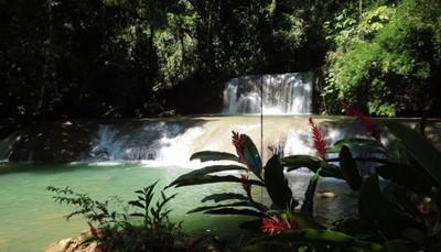 """<span style=""""color:#FF0000;""""><strong>6. &nbsp;Zipline van de watervallen naar beneden in YS Falls&nbsp;</strong></span><br /> YS Falls is een natuurpark, waar je zeven watervallen vindt die uitmonden in natuurlijke waterpoelen. Je kunt er aan lianen slingeren, vanop de rotsen in het water springen, of gewoon lekker zwemmen in de verschillende natuurlijk ontstane zwembaden. Ben je dapper genoeg, klik je dan met een harnas vast aan een zipline en glijd van de top van de bomen over de watervallen naar beneden."""