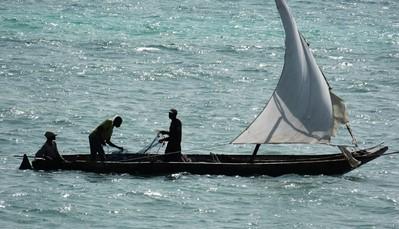 Zanzibar is een eiland in de warme wateren van de Indische Oceaan, aan de oostkust van Afrika. Het wordt wel eens het specerijeneiland genoemd omwille van de lokale productie van nootmuskaat, kaneel en peper. Met zijn adembenemende koraalriffen is het bovendien een paradijs voor duikers en snorkelaars. Het rijke Arabische verleden is ook nog overal aanwezig, onder andere in de traditionele dhow schepen met hun driehoekige zeilen die kenmerkend zijn voor de streek.