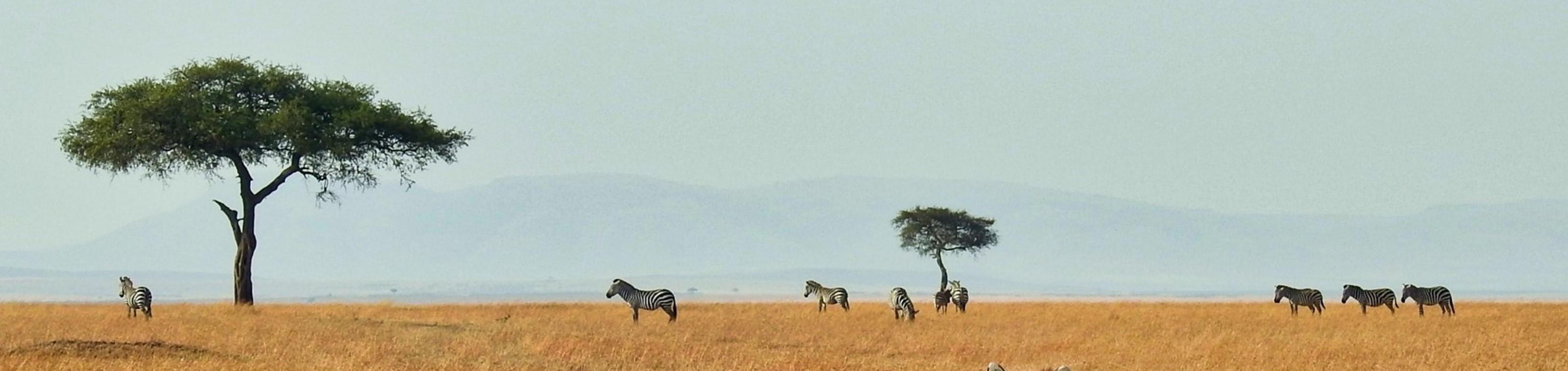 Win een reis naar Kenia